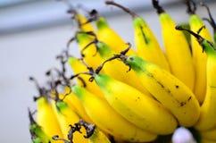 香蕉 免版税库存照片