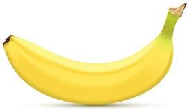 香蕉 皇族释放例证