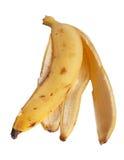 香蕉s皮肤 免版税库存照片