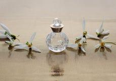 香水和snowdrop 免版税库存照片
