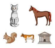 马、母牛、猫、灰鼠和其他动物 动物在动画片样式传染媒介标志库存设置了汇集象 免版税库存照片