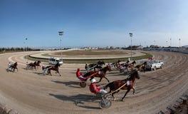 马上马具的赛马比赛宽景色 免版税图库摄影