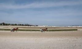 马上马具的赛马比赛起动宽视图 图库摄影