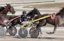 马上马具的赛马比赛骑师细节 免版税库存照片