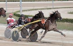 马上马具的赛马比赛051 免版税库存照片