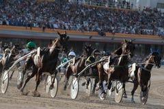 马上马具的赛马比赛005 免版税库存照片