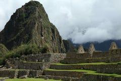 马丘比丘秘鲁细节 免版税库存照片