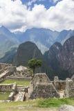 马丘比丘,秘鲁 免版税图库摄影