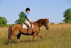 马乘驾 免版税图库摄影