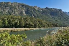 马偕小河,峡湾国家公园,北Fiordland,俯视Eglinton谷,在Milford路,新的Z 免版税库存图片