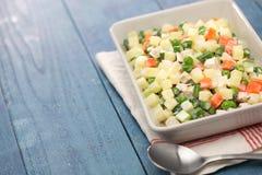 马其顿沙拉, macedoine de legumes,混杂的菜沙拉 免版税库存照片