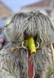 马其顿prilep 2018年2月18日-戴着动物毛皮和面具的执行者参加国际狂欢节 免版税库存照片