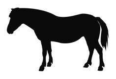 马剪影 库存例证
