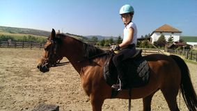 马后面的女孩 库存图片
