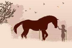 马和女孩 免版税库存图片