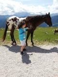 马和女婴 库存照片