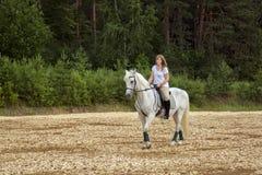 马和妇女 库存图片