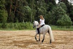 马和妇女 库存照片