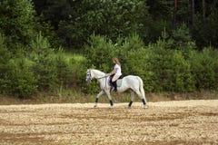 马和妇女 免版税图库摄影