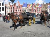 马和支架在布鲁日 免版税库存图片