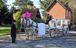 马和支架葬礼 免版税库存照片