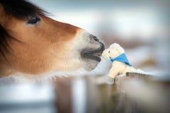 马和玩具马在冬天,亲吻。 免版税库存图片