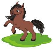 马和草坪 向量例证