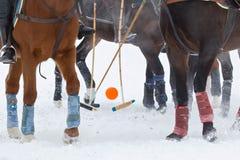 马和蹄的腿用棍子和球在比赛马马球在雪在冬天 免版税库存图片