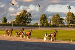 马和车手在上马具的赛马比赛 库存图片