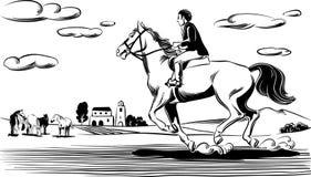马和车手在种族 图库摄影