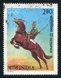 马和车手 免版税库存照片