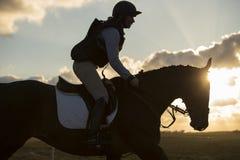 马和车手 免版税图库摄影
