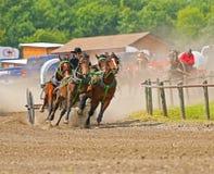 马和运输车赛跑 免版税库存图片