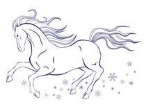 马和雪花 库存图片