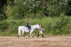 马和婴孩 免版税图库摄影