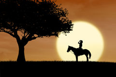 马在日落的车手剪影在公园 免版税库存照片