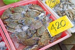 马在桃红色提取和价牌的螃蟹结冰 免版税库存图片
