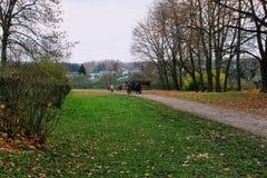 马在计数列夫・托尔斯泰庄园的公园走在Yasnaya Polyana在2017年10月 免版税库存照片
