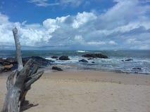 马塔勒海滩在斯里兰卡 库存照片