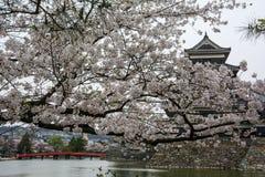 马塔莫罗斯城堡马塔莫罗斯jo,日本首要的历史的城堡在easthern本州,马塔莫罗斯石牌, Chubu地区,长野 免版税图库摄影