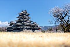 马塔莫罗斯城堡,长野,日本 图库摄影