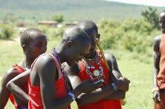 马塞人玛拉储备,肯尼亚- 2008年11月25日 免版税图库摄影