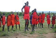 马塞人部族舞蹈 免版税库存图片