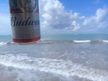 马塞约,AL,巴西- 2019年5月12日:后边百威冰镇啤酒和美丽的天空和海 图库摄影