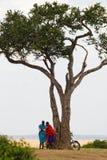 马塞语在树下 免版税库存照片