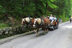 马夫妇利用的车是山高山路的幸运人 库存照片
