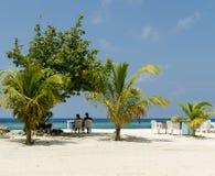 """马尔代夫†""""2017年11月:在热带海滩的休息的夫妇Maafushi海岛,马尔代夫,印度洋 图库摄影"""