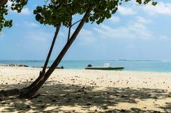 """马尔代夫†""""2017年11月19日:热带海滩自然风景, Kaafu环礁, Kuda Huraa海岛 库存照片"""
