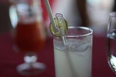 马尔代夫杯子酒 免版税库存照片