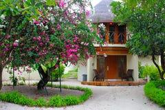 马尔代夫,8月 2012? 对一座异乎寻常的两层圆的平房的五颜六色的看法在开花树和棕榈中 免版税库存照片